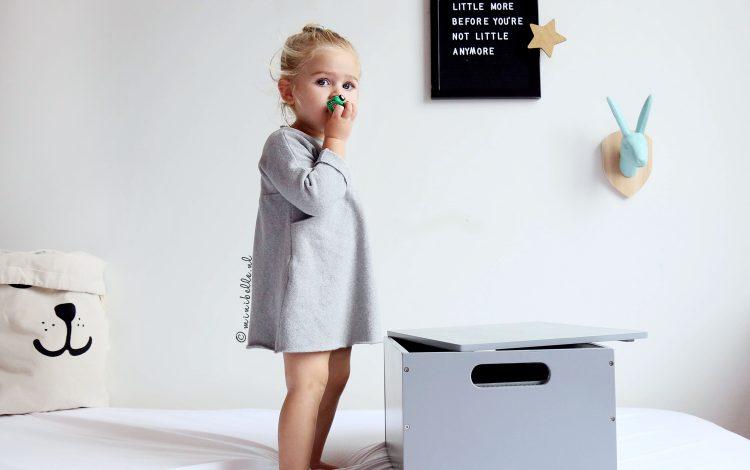 Tidy books: Netjes opbergen en ordenen van klein speelgoed